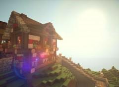 Jeux Vidéo Minecraft by Xad