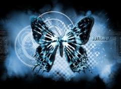 Art - Numérique Butterfly
