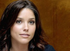 Celebrities Women Sophia Bush