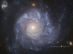 Space La galaxie spirale NGC 1309