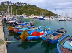 Voyages : Afrique la goulette , carthage et sidi bou saïd