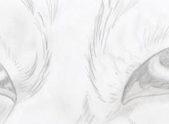 Manga Image sans titre N°336887