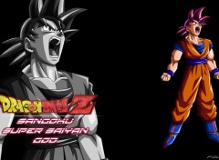 Manga Fond d'écran Dragon ball z Sangoku super saiyan god