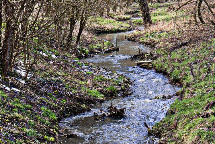 Wallpapers Nature Rivers - Torrents Wallpaper N°340287