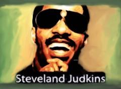 Art - Peinture Stevie Wonder