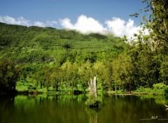 Nature Salazie 974