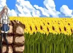 Art - Numérique champs de tournesols