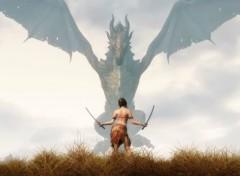 """Jeux Vidéo """"The Elderscroll V: Skyrim"""": Girl vs dragon"""