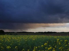 Nature Giboulées de mai...