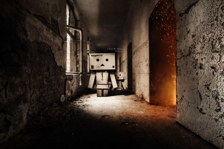 Fonds d'écran Objets Danbo Don't Be Afraid