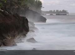 Nature l'île de la Réunion