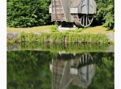 Voyages : Europe Grue médiévale (Bruges)