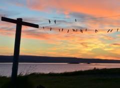 Voyages : Europe Voyage en Islande
