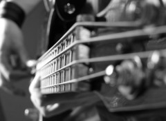 Wallpapers Music Guitare basse