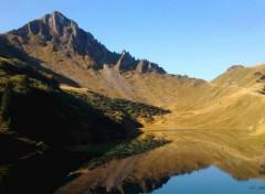 Nature Lac du Lessy - Petit Bornan les Glières (74)