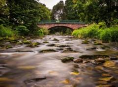 Nature Le Pont