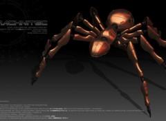 Art - Numérique Arachnitec