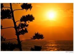 Nature Coucher de soleil