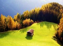 Nature paradis  de la plaine