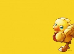 Video Games Chocobo
