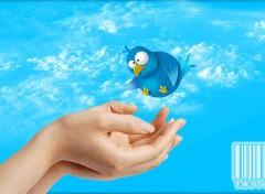 Informatique Twitter