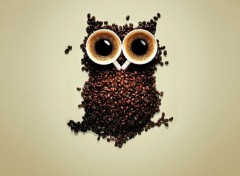 Objects Café hibou !
