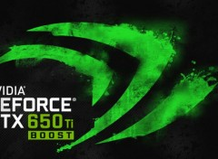 Informatique Nvidia GeForce GTX 650 Ti Boost