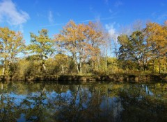 Nature Canal de Bourgogne, Pont royal