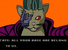 Video Games All your base are belong to us.