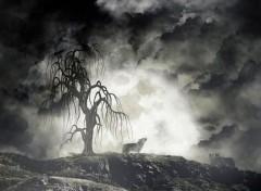 Art - Numérique la colline du pendu
