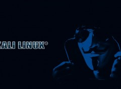 Informatique Kali Linux wallpaper