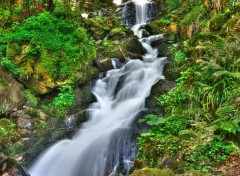 Nature au fil de l'eau