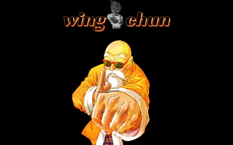 Wallpapers Manga Dragon Ball Wing chun