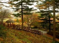 Voyages : Asie Au Jardin du matin calme!^^