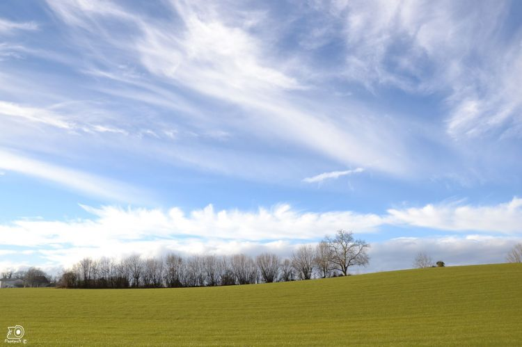 Wallpapers Nature Seasons - Spring Paysage