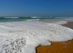 Nature face à la mer