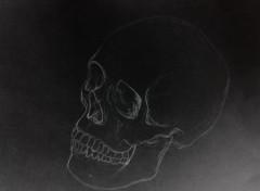 Art - Crayon Crâne humain