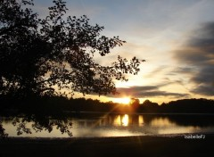 Nature lac du Malsaucy