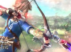 Video Games Zelda Wii U