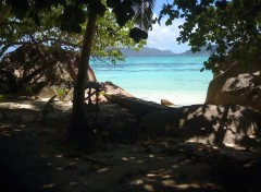 Nature La Digue (Seychelles)