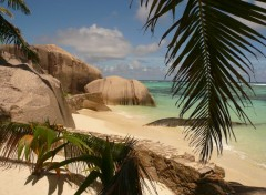 Nature La Digue (Seychelles)