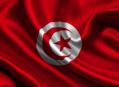 Digital Art Tunisia flag