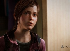 Video Games The Last of Us Remastered