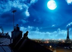 Art - Numérique Chat sur les toits de Paris