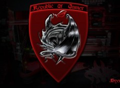Informatique Républic of gamer logo dragon