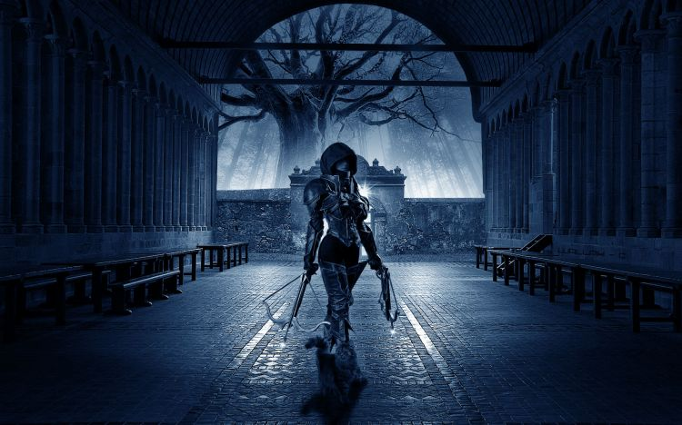 Wallpapers Fantasy and Science Fiction Warriors succube