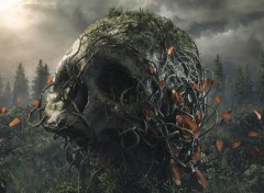 Fantasy et Science Fiction Old Skull