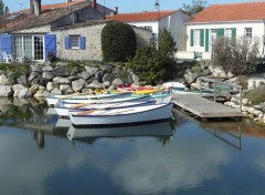 Voyages : Europe Oléron 2012