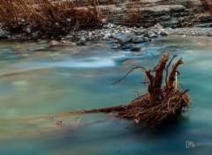 Nature Exp(l)osure Time