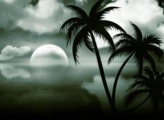 Art - Numérique Nuit de rêves